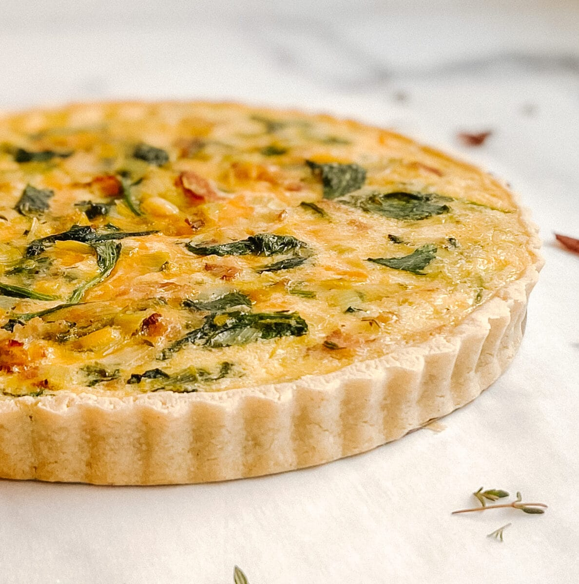 side view of quiche, with pastry crust, green spinach, cheese and bacon can be seen in the quiche